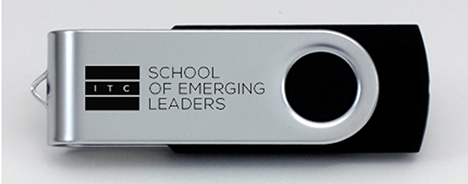 School of Emerging Leaders USB