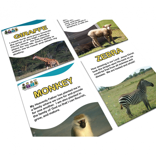 God's Creation Flash Cards